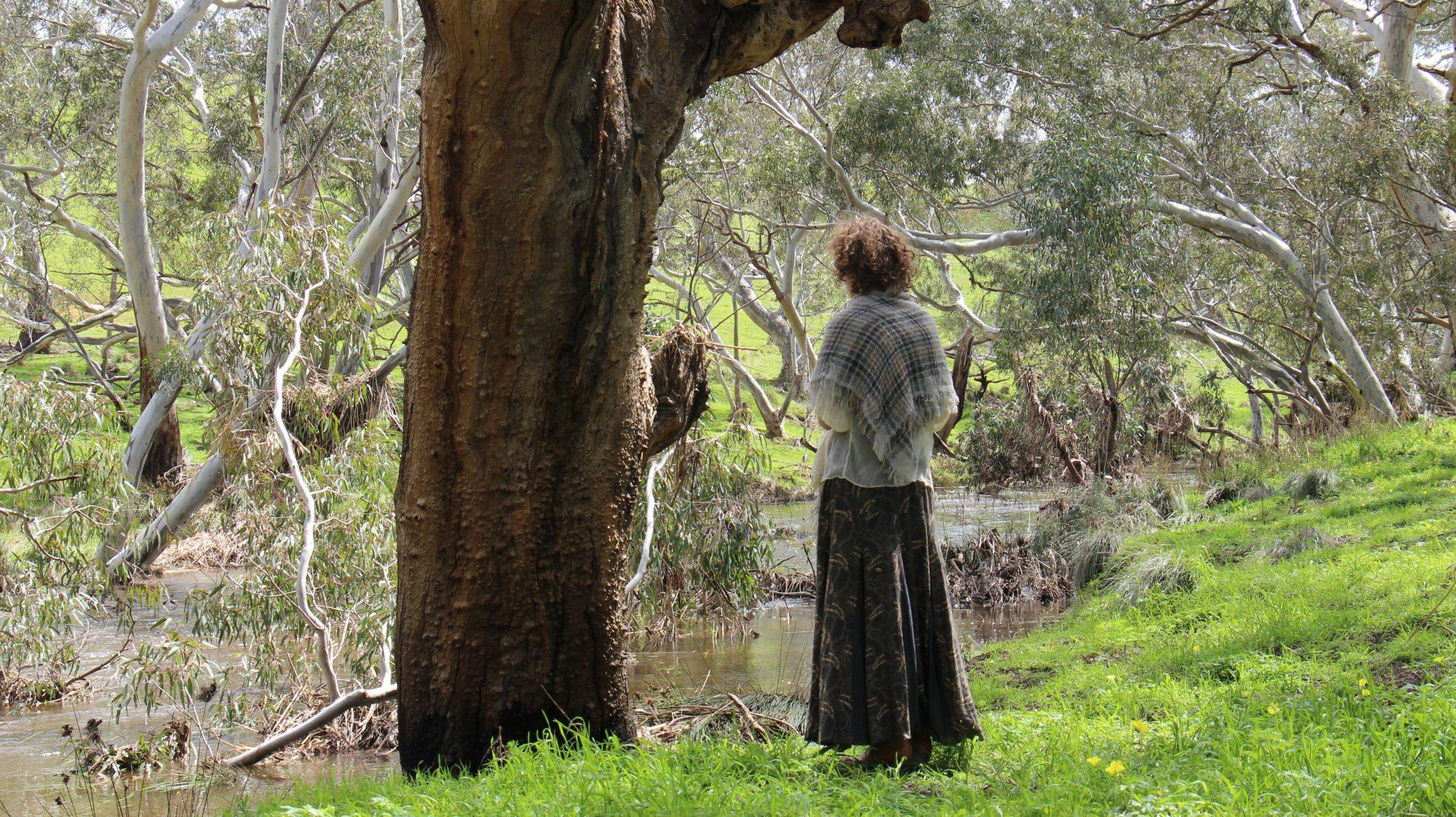 'The Hanging Tree'